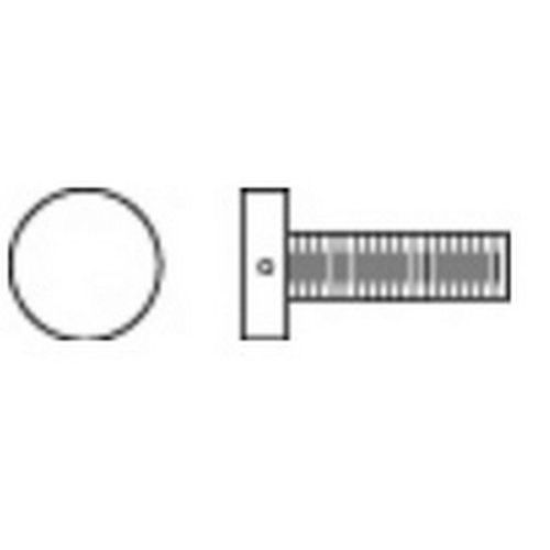 Rockwood SP1063 Decorative Thru Bolt, 1